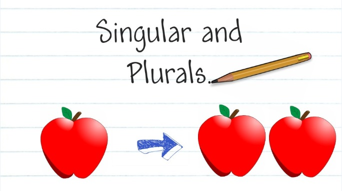 Let's Have Fun with English: SIngular and Plural Nouns